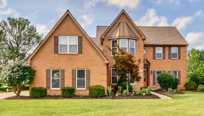 Franklin County, Delaware County, Fairfield County, Hocking County, Licking County, Madison County, Morrow County, Perry County, Pickaway County, Union County Single Family Home For Sale: 235 Players Club Court