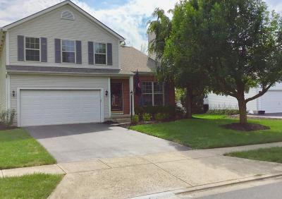 Hilliard Single Family Home For Sale: 3284 Scioto Glen Drive