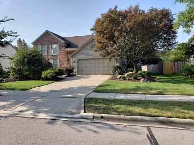 Westerville Single Family Home For Sale: 837 Westray Drive