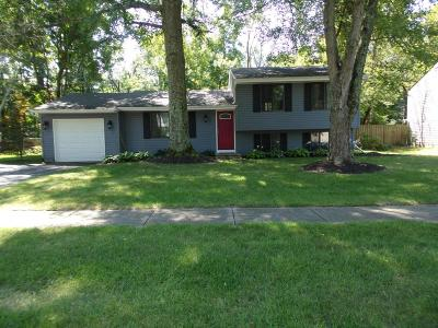 Pickerington Single Family Home For Sale: 604 Sycamore Drive