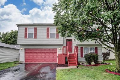 Single Family Home For Sale: 2553 Anderley Court