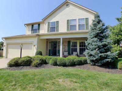 Pickerington Single Family Home For Sale: 450 Big Bark Court