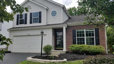 Blacklick Single Family Home For Sale: 7993 Headwater Drive