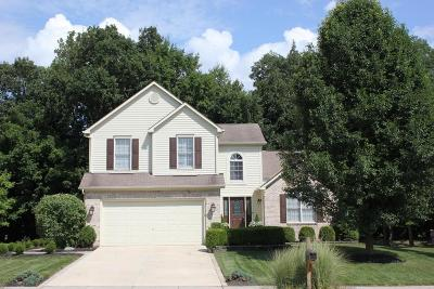 Lewis Center Single Family Home For Sale: 8171 Coldharbor Boulevard
