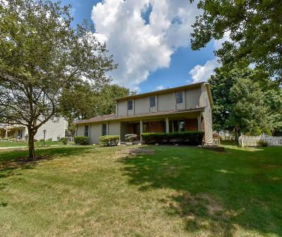 Pickerington Single Family Home For Sale: 50 Timber Ridge Drive