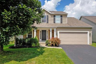 Blacklick Single Family Home For Sale: 8310 Parori Lane