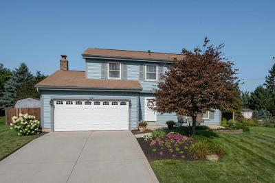 Westerville Single Family Home For Sale: 291 Baker Lake Drive