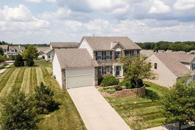 Single Family Home For Sale: 7589 Embers Lane