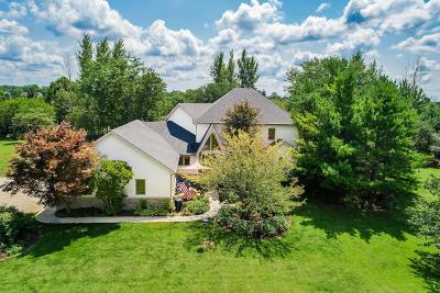 Galloway Single Family Home For Sale: 8849 Riebel Road