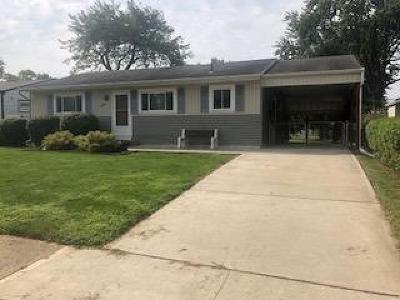Whitehall Single Family Home For Sale: 4389 Chandler Drive