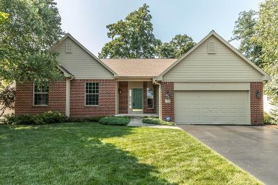 Lewis Center Single Family Home For Sale: 2500 Bold Venture Drive