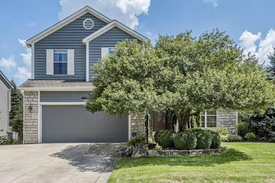 Hilliard Single Family Home For Sale: 4376 Landmark Lane