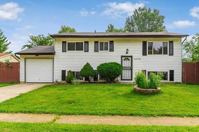 Columbus Single Family Home For Sale: 4678 Fox River Run