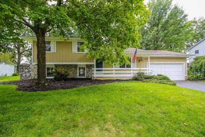 Westerville Single Family Home For Sale: 919 E College Avenue