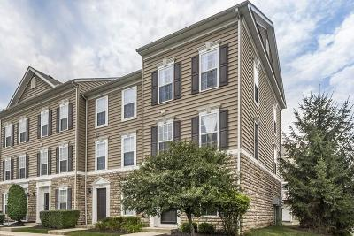 Blacklick Condo For Sale: 8165 Overcup Drive
