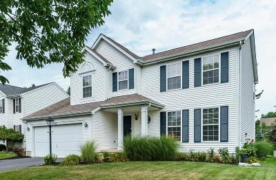Dublin Single Family Home For Sale: 6258 Kendall Ridge Boulevard