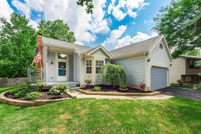 Columbus Single Family Home For Sale: 1660 Weather Stone Lane