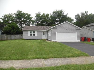 Grove City Single Family Home For Sale: 3975 Cypress Avenue