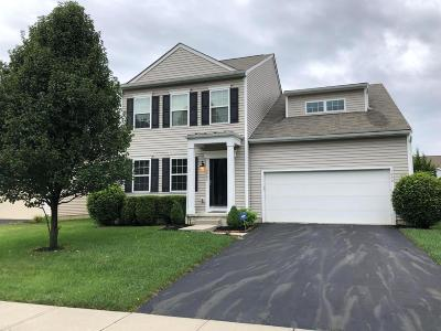 Blacklick Single Family Home For Sale: 7902 Prairie Willow Drive