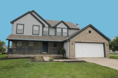 Reynoldsburg Single Family Home For Sale: 8869 Coral Canyon Circle