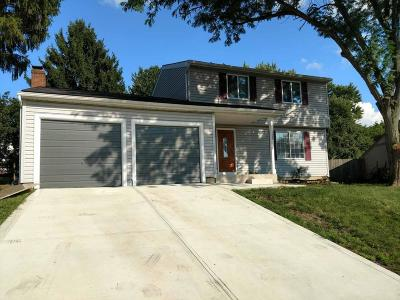 Dublin Single Family Home For Sale: 6588 Strathcona Avenue