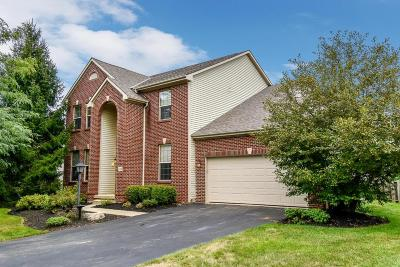 Pickerington Single Family Home For Sale: 624 Theron Drive
