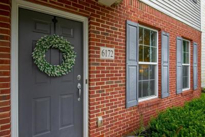 New Albany Single Family Home For Sale: 6172 Ashtead Drive