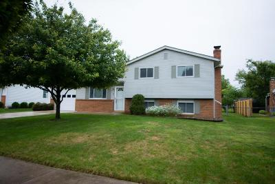 Grove City Single Family Home For Sale: 3373 Simmons Drive