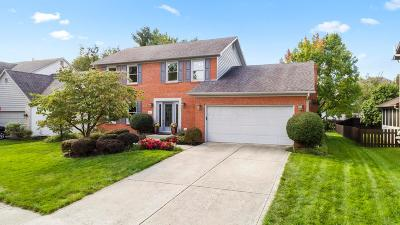 Westerville Single Family Home For Sale: 427 Rockbourne Drive