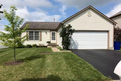 Delaware Single Family Home For Sale: 225 Overtrick Drive