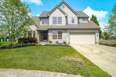 Grove City Single Family Home Contingent Finance And Inspect: 2954 Dunhurst Court