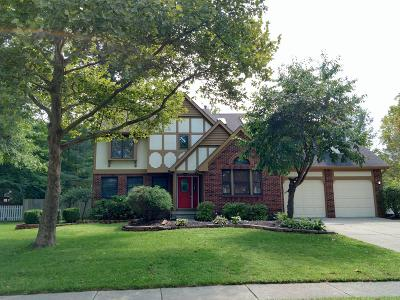 Gahanna Single Family Home For Sale: 980 Zodiac Avenue
