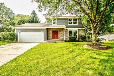 Powell Single Family Home Contingent Finance And Inspect: 383 Meadow View Drive