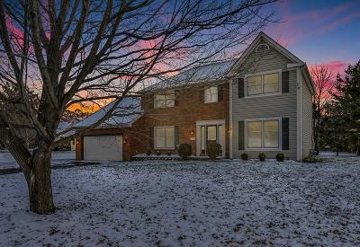 Pickerington Single Family Home Contingent Finance And Inspect: 12168 Appleridge Court