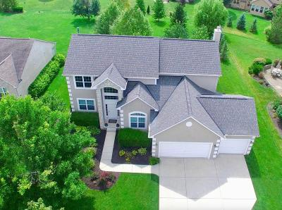 Hilliard Single Family Home Contingent Finance And Inspect: 6255 Clover Place