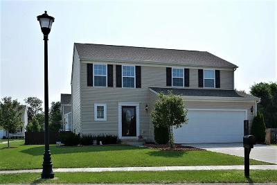 Canal Winchester Single Family Home Contingent Finance And Inspect: 5530 Lehman Meadows Drive