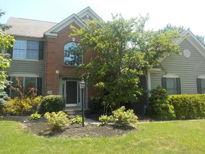 Hilliard Single Family Home For Sale: 3450 Heritage Oaks Drive