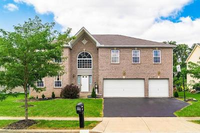 Reynoldsburg Single Family Home Contingent Finance And Inspect: 8076 Harvestmoon Drive