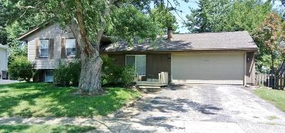 Gahanna Single Family Home Contingent Finance And Inspect: 644 Mistletoe Court