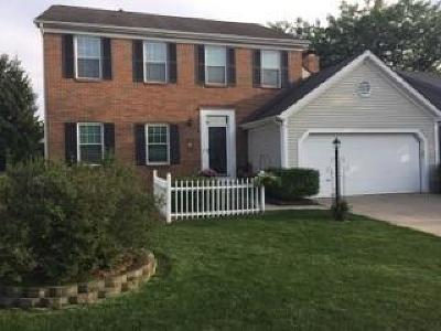 Hilliard Single Family Home For Sale: 5701 Turner Lane