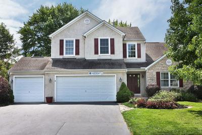 Hilliard Single Family Home For Sale: 6185 Pollard Place Drive