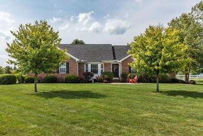 Grove City Single Family Home Contingent Finance And Inspect: 3002 Grassy Bend Drive