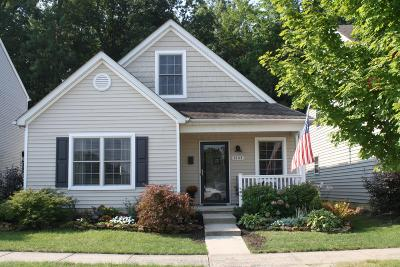 Westerville Single Family Home For Sale: 6103 Eden Valley Drive