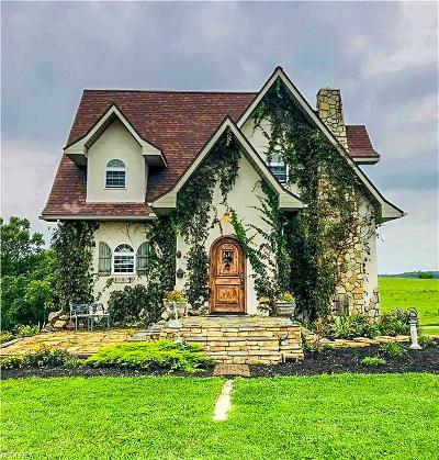 Perry County Single Family Home Contingent Finance And Inspect: 12619 Township Road 106