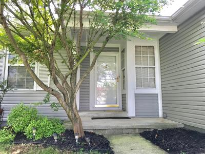 Westerville Single Family Home For Sale: 1439 Mentor Drive