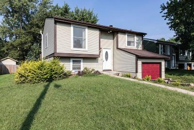 Single Family Home For Sale: 3017 Rumford Court