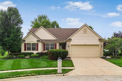 Single Family Home For Sale: 4883 Golden Grove Court