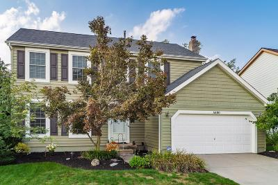 Hilliard Single Family Home For Sale: 5400 Red Wynne Lane