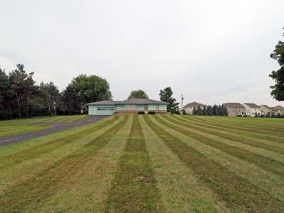 Plain City Single Family Home For Sale: 9439 Us Highway 42 N