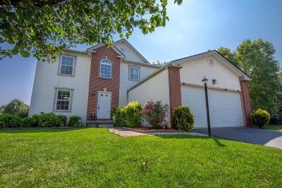 Lewis Center Single Family Home For Sale: 7841 Orange Station Loop